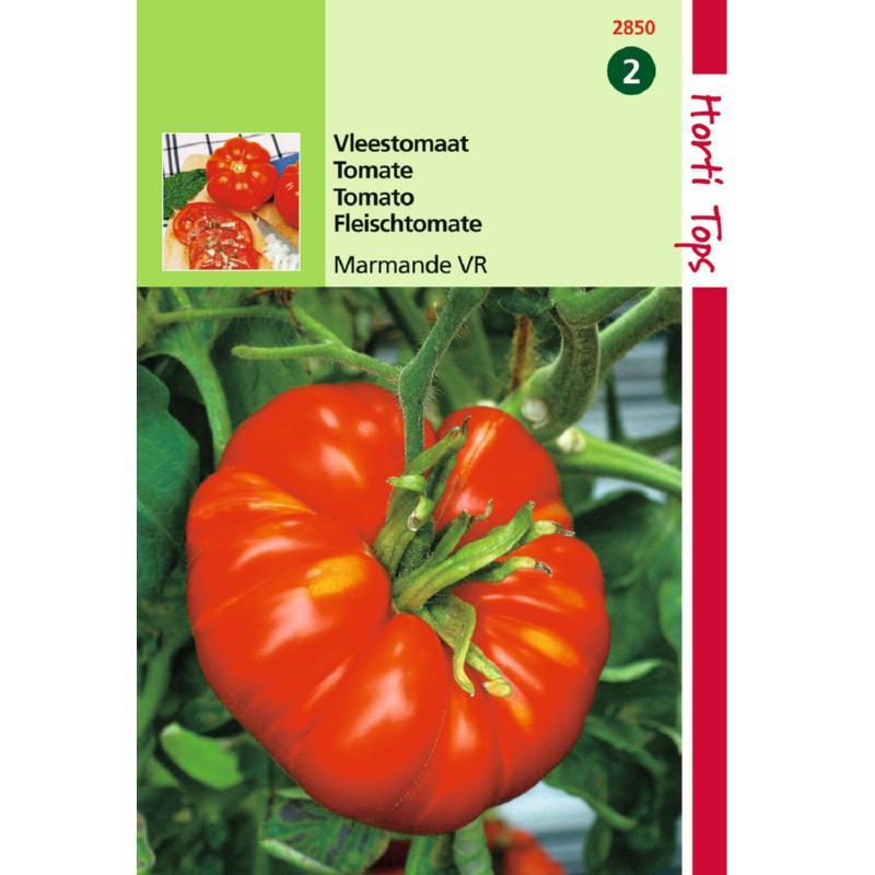 Tomate marmande-sachet de graînes-tomate précoce et savoureuse-tuinplus-Anima-Jardin.fr
