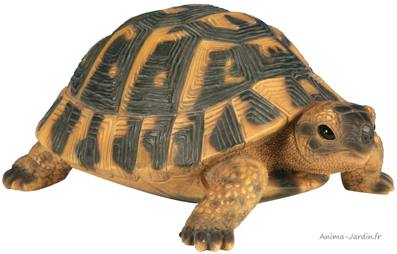 Tortue Hermann-24cm-résine-animal-décoration de jardin-réptile
