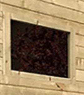 fenêtre pour abri de jardin-Anima-Jardin.fr