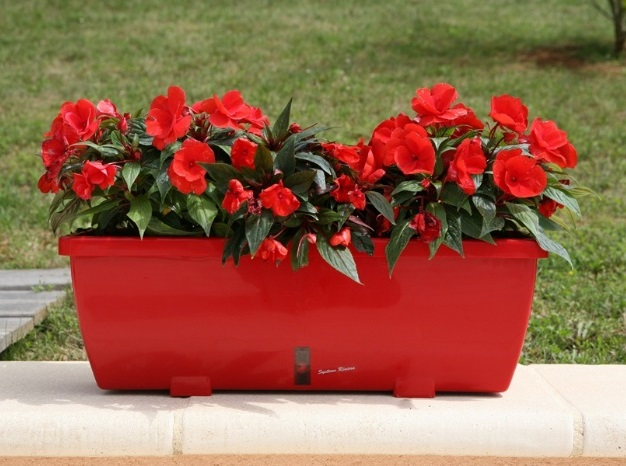 jardinière-Eva-rouge