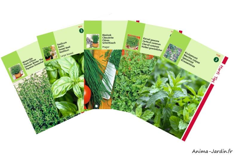 Lot de graines aromatiques-5 variétés-Hortitops-Anima-Jardin.fr